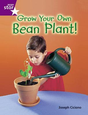 Rigby Star Guid Year 2 Purple Level: Grow Your Own Bean Plant Guided Reading Pk Framework