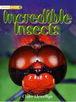 Literacy World Non-Fiction Stage 1 Incredible Insects