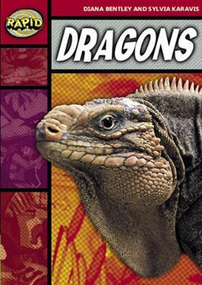 Rapid Stage 2 Set B Reader Pack: Dragons (Series 1)