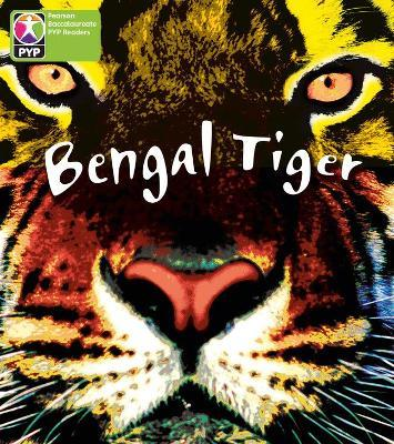 Primary Years Programme Level 4 Save Bengal Tiger 6 Pack