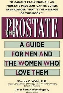 The Prostate