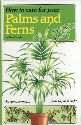 How to Care For Your Palms and Ferns