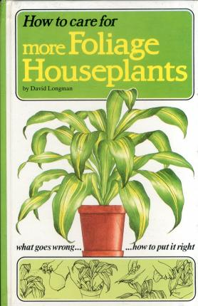 How to Care For More Foliage Houseplants