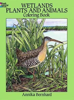 Wetlands Plants And Animals Colouring Book