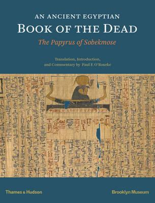 An Ancient Egyptian Book of the Dead Cover Image