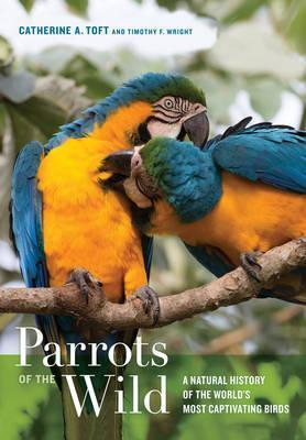Parrots of the Wild : A Natural History of the World's Most Captivating Birds