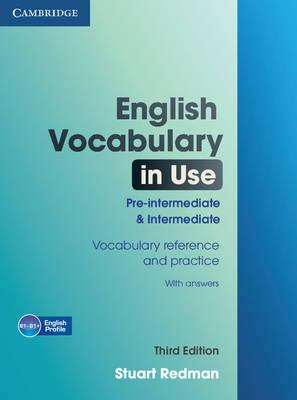 English Vocabulary In Use Pre Intermediate And Intermediate With
