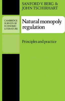 Natural Monopoly Regulation: Principles and Practice