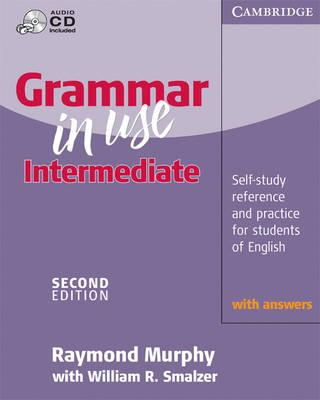 english grammar in use audio mp3 free download