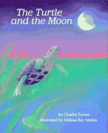 Turner & Mathis : Turtle and the Moon (Hbk)