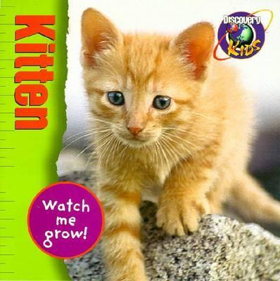 Watch ME Grow: Kitten