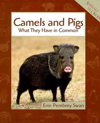 Camels and Pigs
