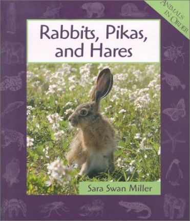 Rabbits, Pikas, and Hares