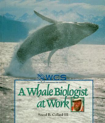 A Whale Biologist at Work