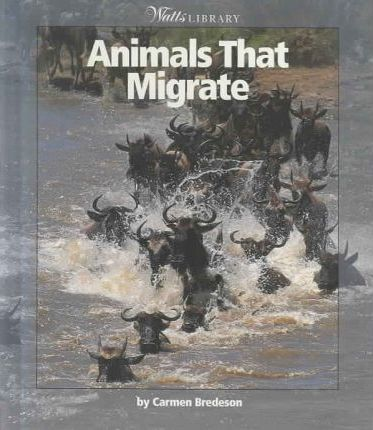 Animals That Migrate