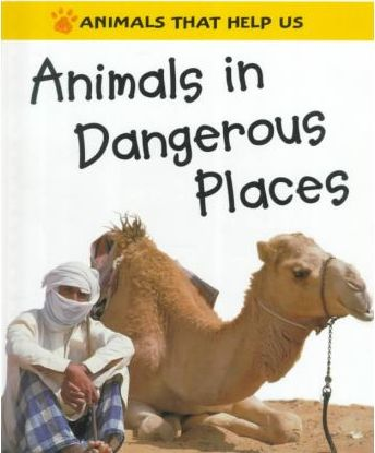 Animals in Dangerous Places