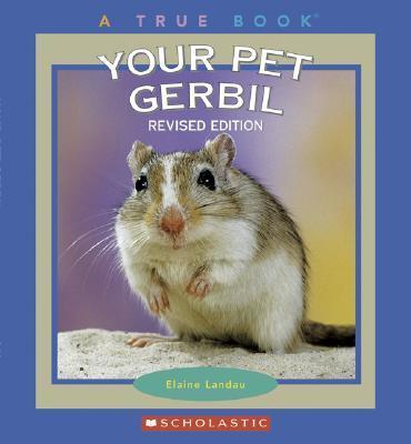 Your Pet Gerbil