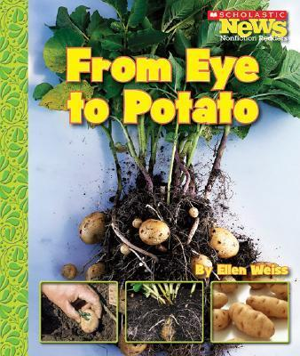 From Eye to Potato