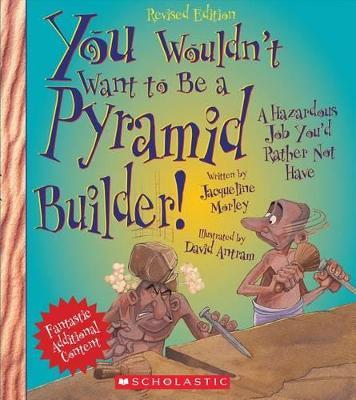 You Wouldn't Want to Be a Pyramid Builder! (Revised Edition)