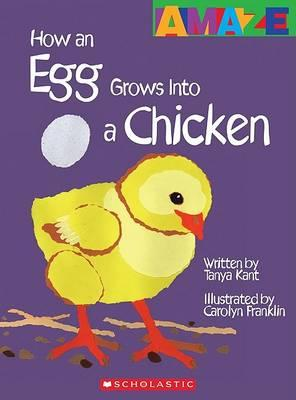 How an Egg Grows Into a Chicken