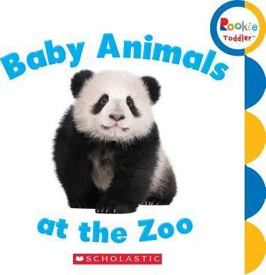 Baby Animals at the Zoo