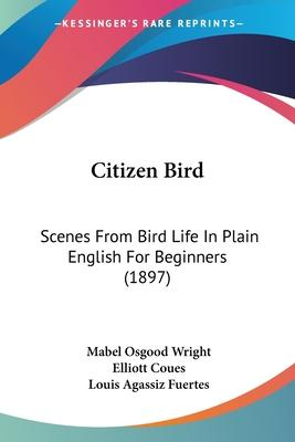 Citizen Bird