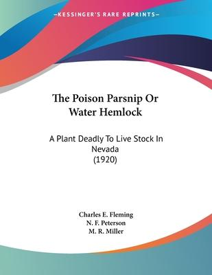 The Poison Parsnip or Water Hemlock