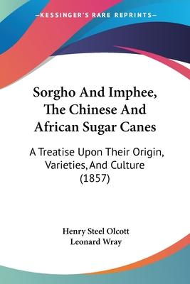 Sorgho and Imphee, the Chinese and African Sugar Canes