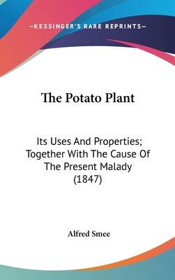 The Potato Plant