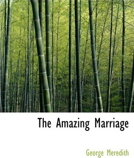 The Amazing Marriage Cover Image