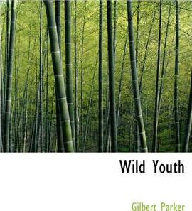 Wild Youth Cover Image
