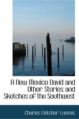 A New Mexico David and Other Stories and Sketches of the Southwest