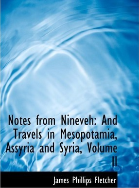 Notes from Nineveh