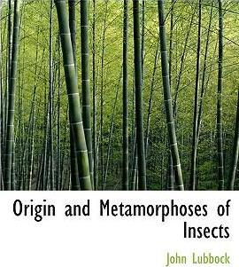 Origin and Metamorphoses of Insects