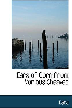 Ears of Corn from Various Sheaves