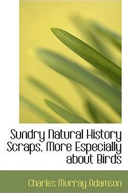 Sundry Natural History Scraps, More Especially about Birds