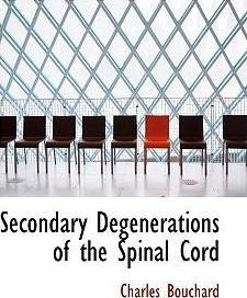 Secondary Degenerations of the Spinal Cord