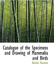 Catalogue of the Specimens and Drawing of Mammalia and Birds