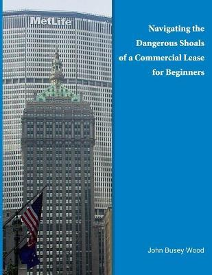 Navigating the Dangerous Shoals of a Commercial Lease for Beginners