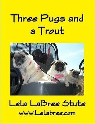 Three Pugs and a Trout