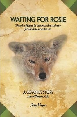 Waiting For Rosie (A Coyote's Tale)