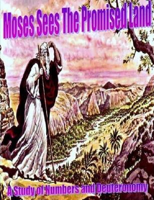 """Moses Sees the Promised Land"" A Study of Numbers and Deuteronomy"