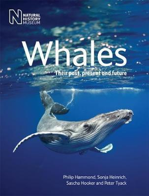 Whales : Their Past, Present and Future