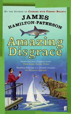 Amazing Disgrace Cover Image