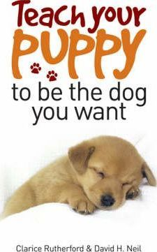 Teach Your Puppy to be the Dog You Want