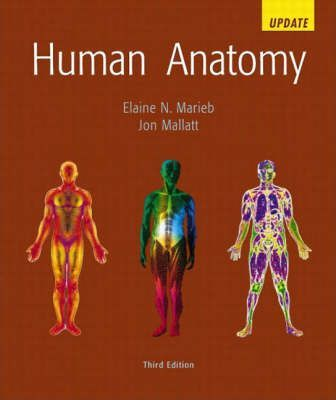 Human Anatomy Update: AND Anatomy Coloring Book