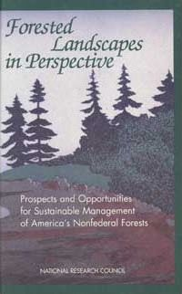 Forested Landscapes in Perspective