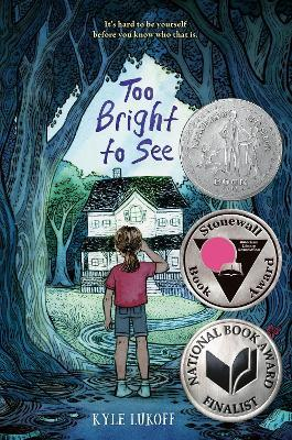 Too Bright to See