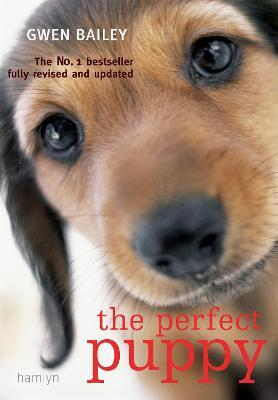 the perfect puppy