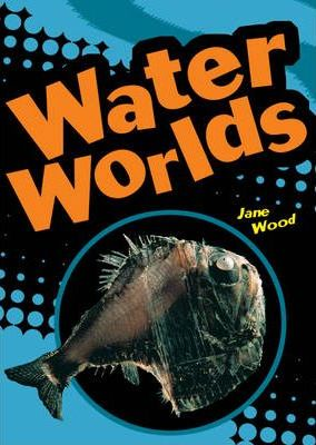 Pocket Facts Year 4 Non Fiction: Water Worlds